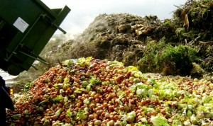 Food Waste: To παγκόσμιο πρόβλημα της σπατάλης τροφίμων