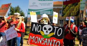 24η Μαΐου: Παγκόσμια ημέρα δράσης ενάντια στη Monsanto