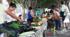 Η οικολογική γεωργία βγάζει ρίζες στην Ισπανία