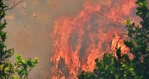 Πιο συχνές και έντονες πυρκαγιές λόγω κλιματικής αλλαγής