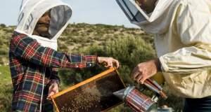 Το ελληνικό μέλι με χρυσάφι που κατέκτησε τα Harrods