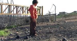 Ημέρα Αλληλεγγύης στον Παλαιστινιακό Λαό: «5 Σπασμένες Κάμερες»