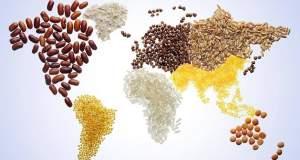 Κίνημα Fair Trade: Η γέφυρα μεταξύ Βορρά-Νότου στο δίκαιο εμπόριο