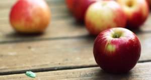 Τα μήλα «ασπίδα» για πέντε τύπους καρκίνου, σύμφωνα και με νέα έρευνα