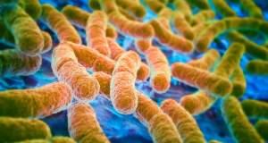 Ο κίνδυνος των υπερμικροβίων και η υπερκατανάλωση αντιβιοτικών