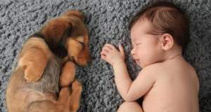 Γιατί οι ιδιοκτήτες σκύλων έχουν πιο υγιή μωρά