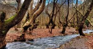 Το μεγαλείο της ελληνικής φύσης: Πέντε κορυφαίοι προορισμοί
