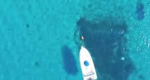 Το απόλυτο γαλάζιο είναι στην Χαλκιδική! [ΒΙΝΤΕΟ]