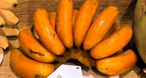 Πως οι πορτοκαλί μπανάνες θα σώσουν εκατομμύρια παιδιά