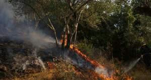 Μαίνεται η πυρκαγιά στην Κέρκυρα