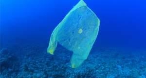 Από το 2018 θα πληρώνουμε την πλαστική σακούλα - Πόσο θα κοστίζει