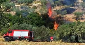 Πυρκαγιά στο δήμο Αρχανών-Αστερουσίων στην Κρήτη