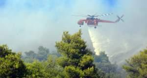 Σε εξέλιξη η πυρκαγιά στην Κεφαλονιά - Δύο τα μέτωπα