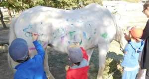 Νηπιαγωγοί παρακίνησαν παιδιά να ζωγραφίσουν πάνω σε άλογο [ΦΩΤΟ]