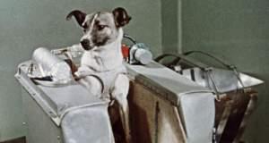 Πριν από 60 χρόνια η ΕΣΣΔ έστελνε τη Λάικα στο διάστημα