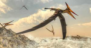Κίνα: Η μεγαλύτερη φωλιά πτερόσαυρων... με πτεροσαυράκια στα απολιθωμένα αυγά!