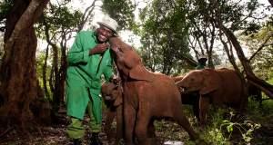 Ένα ορφανοτροφείο για... ελέφαντες [ΒΙΝΤΕΟ]