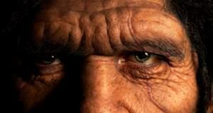 Στα ίχνη της εξέλιξης του Ανθρώπου