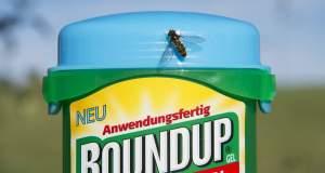 Ένοχη η Monsanto για το Roundup - Αποζημίωση 290 εκατ. σε κηπουρό που νόσησε από καρκίνο
