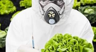 Ο κόσμος σύμφωνα με τη Monsanto