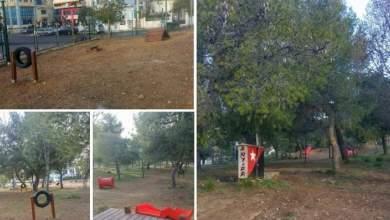 Ένα πρωτοποριακό πάρκο σκύλων στο Άλσος Πετρούπολης