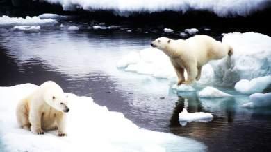 Το «τρελό» σχέδιο των επιστημόνων για να ξαναπαγώσουν την Αρκτική