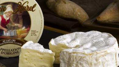 Η Google τιμά τη γυναίκα που ανακάλυψε το τυρί καμαμπέρ