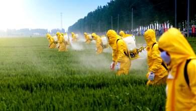 Νομικός πόλεμος Monsanto σε Avaaz