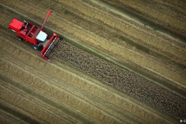 Είναι τα βιοκαύσιμα πιο επιβλαβή για το περιβάλλον από τα ορυκτά καύσιμα;